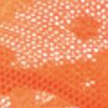 Goa Orange